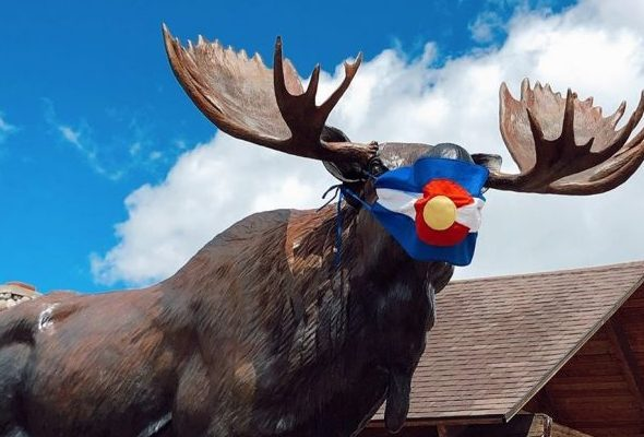 Moose statue in a mask